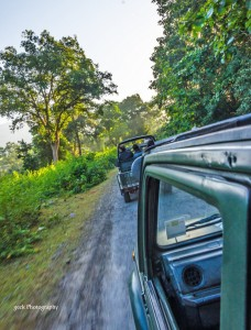 gypsy safari jim corbett