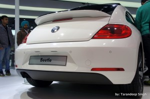 beetle rear