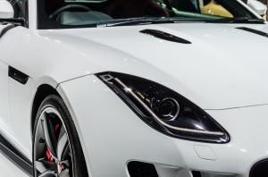 Jaguar sports