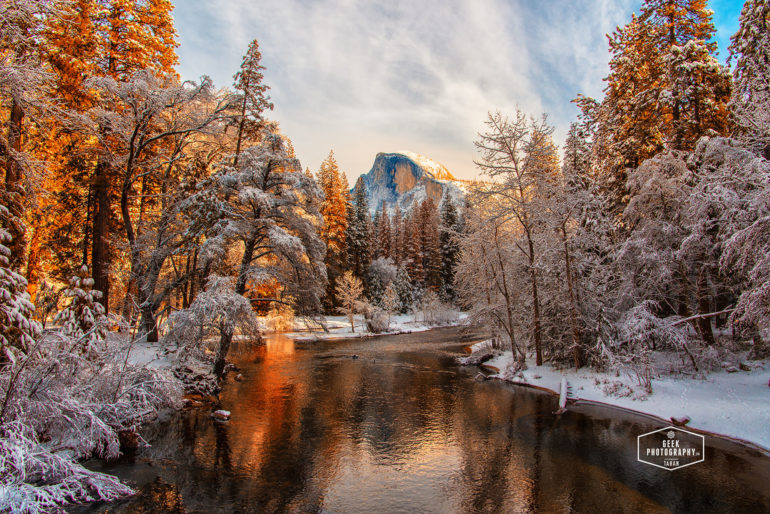 Half Dome Snow Foliage in Yosemite